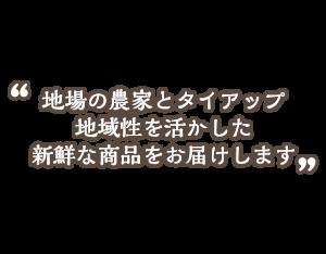 sp_catch3